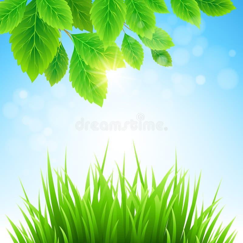 Schoon de lente verbazend landschap Vector illustratie stock illustratie