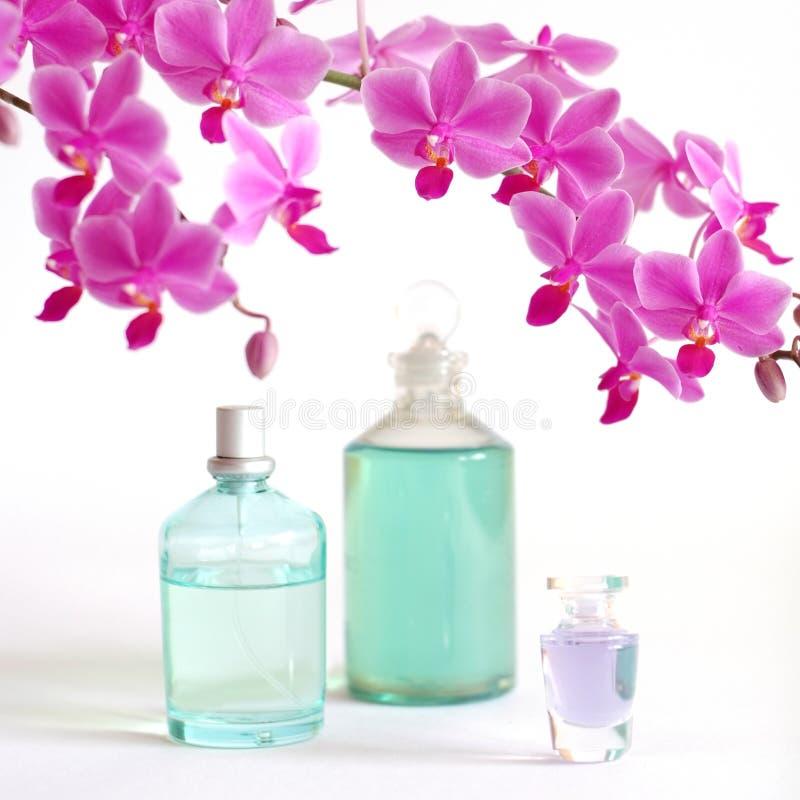 Schoonheid die met orchidee wordt geplaatst stock foto's