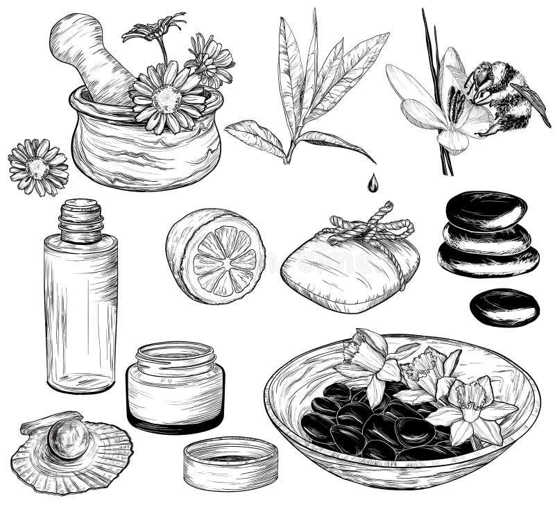 Schoonheid en gezondheidszorgschets stock illustratie