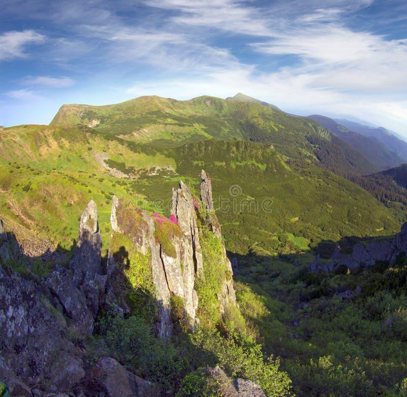 Schoonheid van de Alpen stock afbeelding