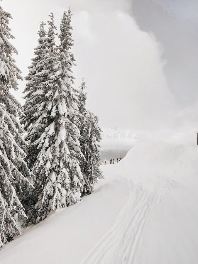 Schoonheid van de bergen stock afbeeldingen