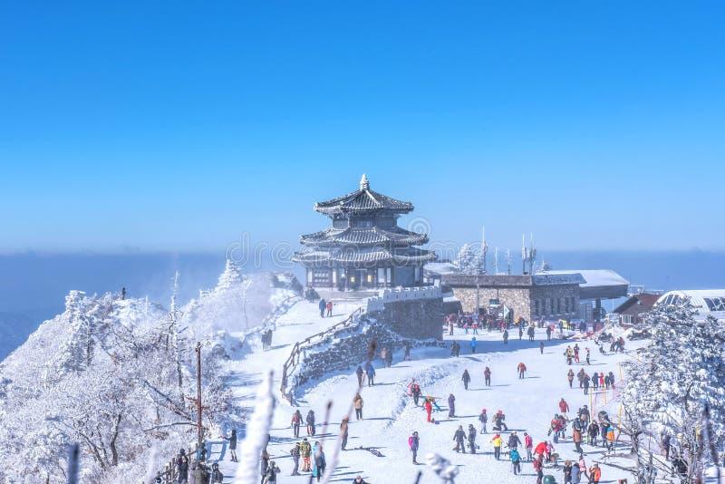 Schoonheid van de winter royalty-vrije stock foto's