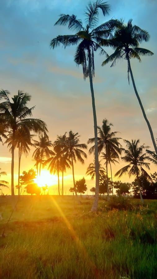 Schoonheid van Zonsondergang stock foto's