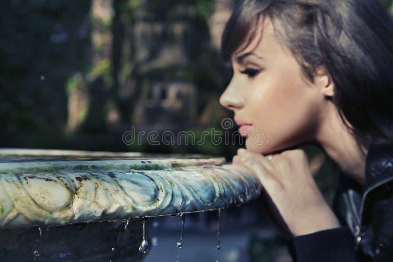 schoonheids brunette royalty-vrije stock foto's
