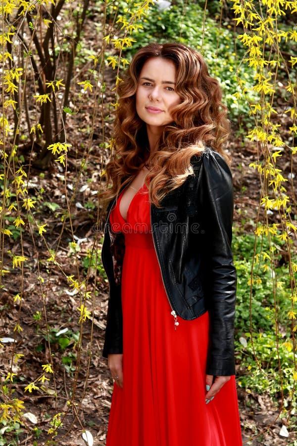 Schoonheidsgezicht van jonge mooie vrouw Het portret van de de lentevrouw royalty-vrije stock fotografie
