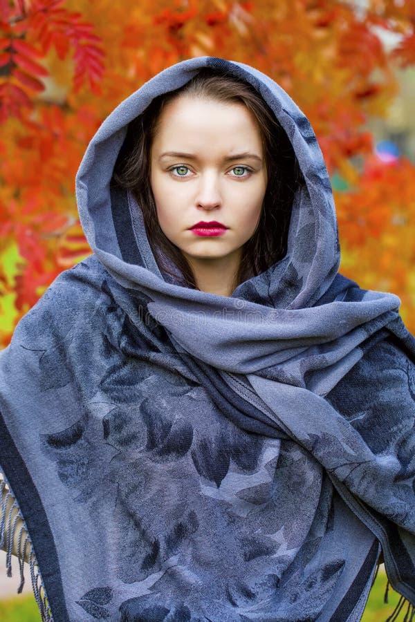 Schoonheidsvrouw in de nationale gevormde sjaal stock afbeelding