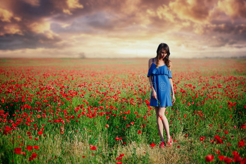Schoonheidsvrouw in een blauwe kleding die een papavergebied bij zonsondergang, netheid en onschuld, eenheid met aard in werking  royalty-vrije stock foto's