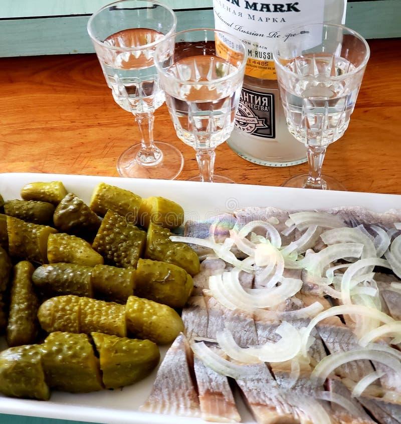 Schoot glazen die met wodka en een plaat met groenten in het zuur worden gevuld en haringen met gesneden uien klaar te drinken royalty-vrije stock foto's