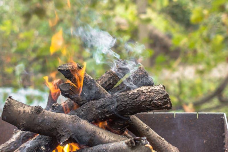 Schornstein auf Feuerholz stockbild