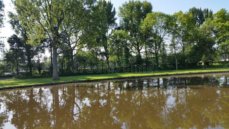 Schoterbos de nature de Haarlem photos libres de droits