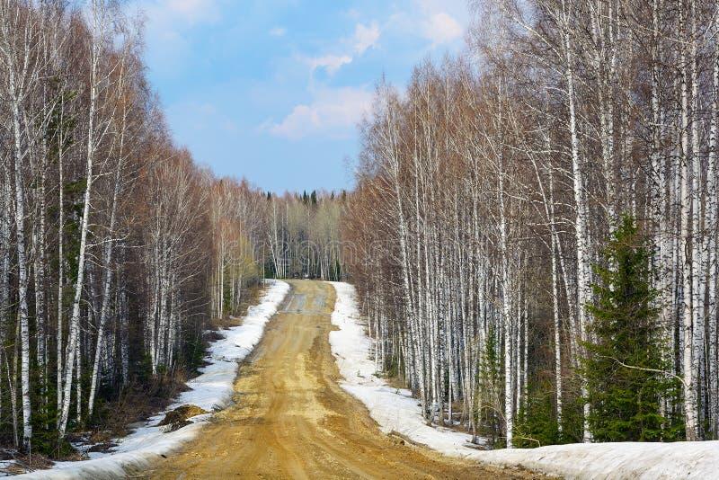 Schotterstraße im sibirischen taiga stockbild