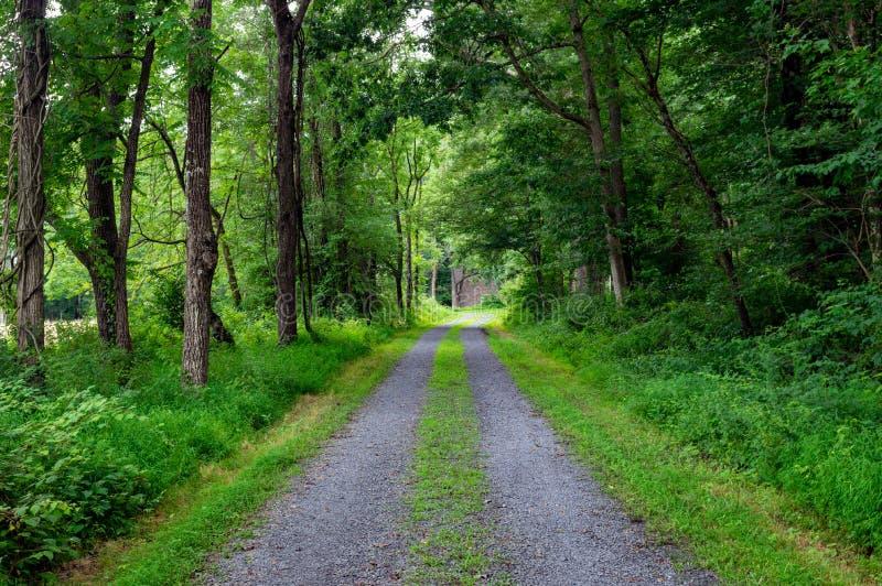 Schotterweg-Bahnen im Wald stockbild