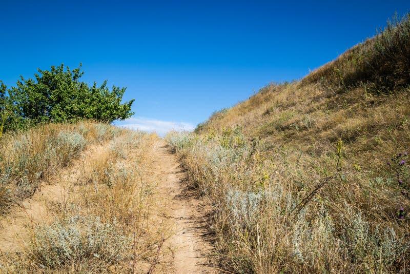 Schotterweg ?berw?ltigt mit dem trockenen Gras, das zu die Spitze des H?gels f?hrt An einem sonnigen Sommertag lizenzfreies stockfoto