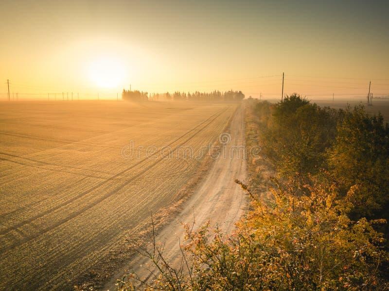 Schotterweg, der in Richtung zum Sonnenaufgang - Landwirtschaft themenorientiert führt Goldene Stunde des Herbstes stockfotografie