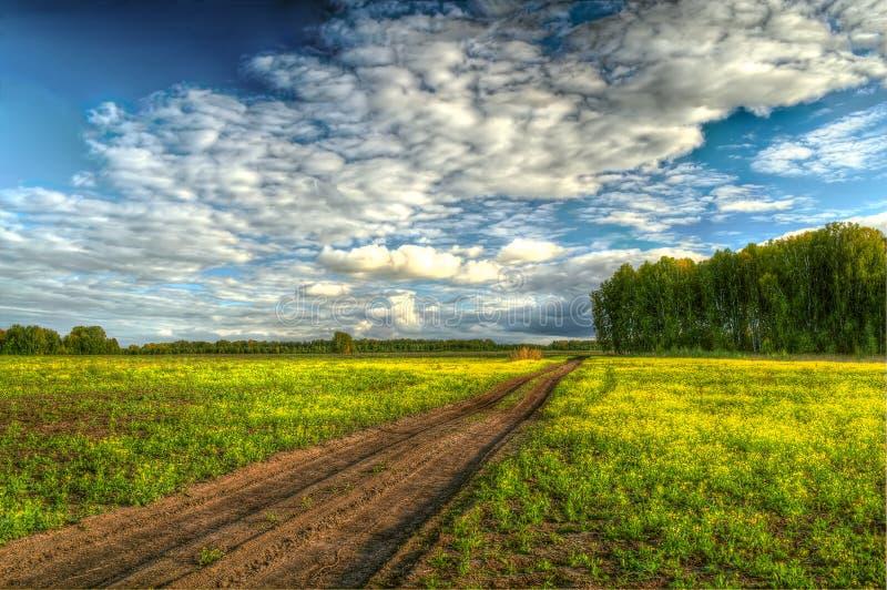 Schotterweg durch das Feld zum Wald stockbild