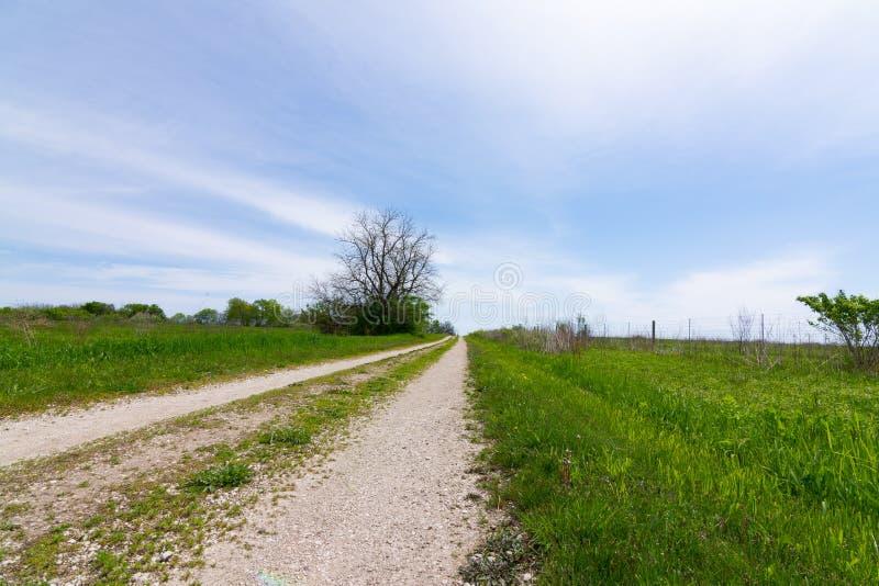 Schotterweg durch das Grasland lizenzfreies stockbild