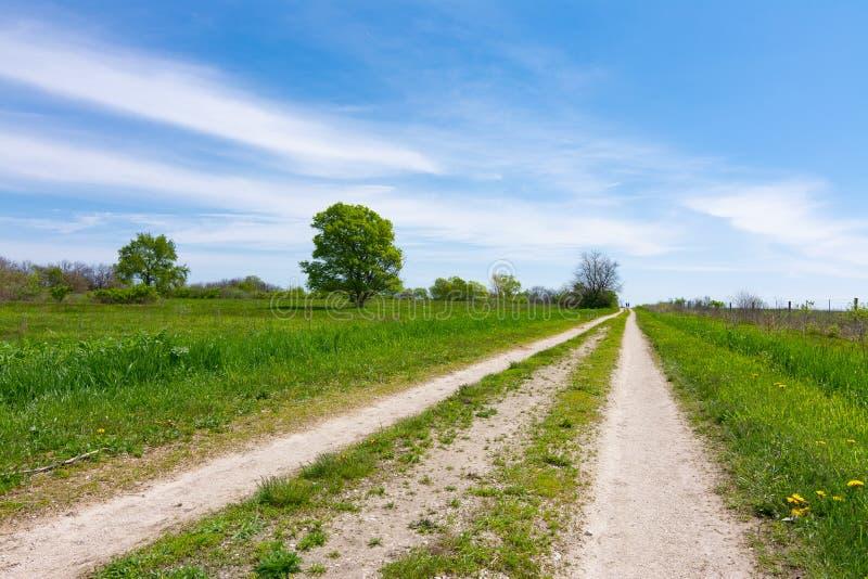 Schotterweg durch das Grasland lizenzfreie stockfotografie