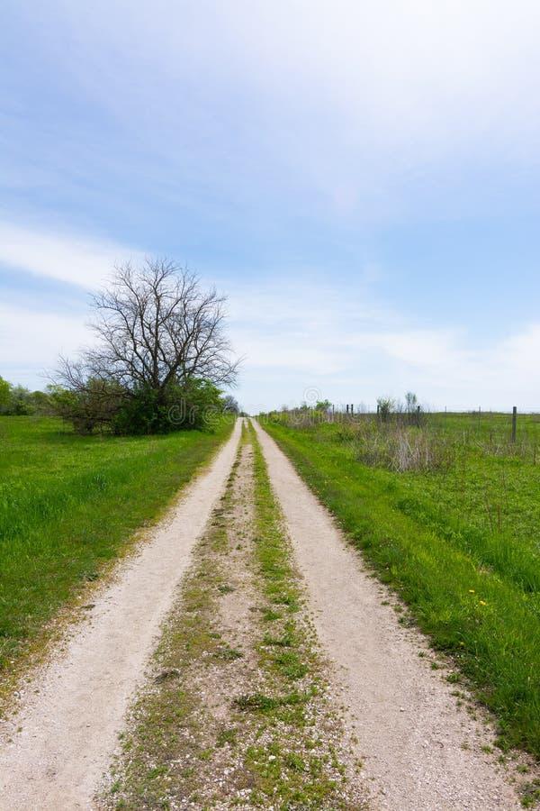 Schotterweg durch das Grasland stockfotos