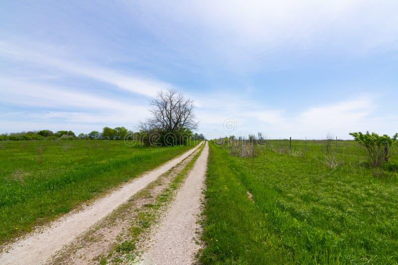 Schotterweg durch das Grasland stockbilder