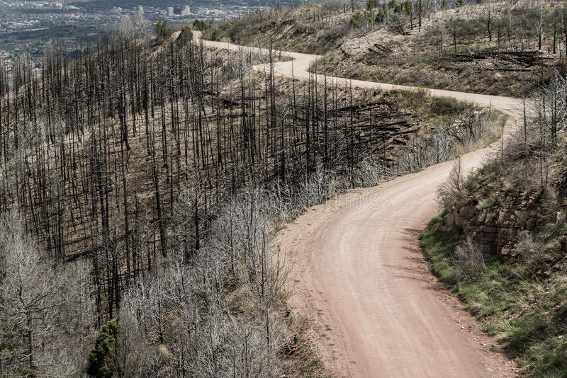 Schotterweg durch Waldo Canyon Forest Fire in Colorado lizenzfreies stockbild