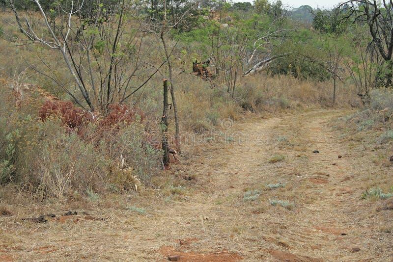 Schotterweg in einem ländlichen Gebiet lizenzfreie stockbilder