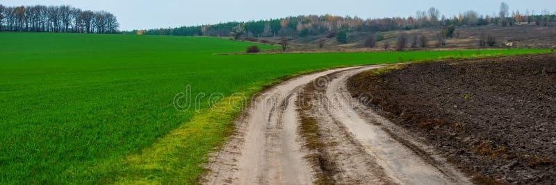 Schotterweg zwischen einem gepflogenen Feld und einem Feld des Winterweizens im hügeligen Gelände stockfotografie