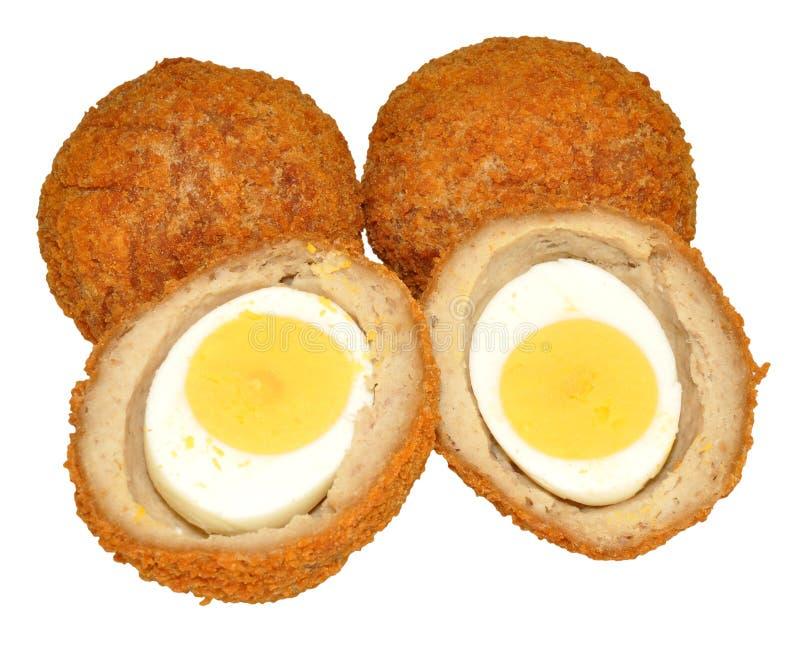 Schottische Eier lizenzfreie stockfotos