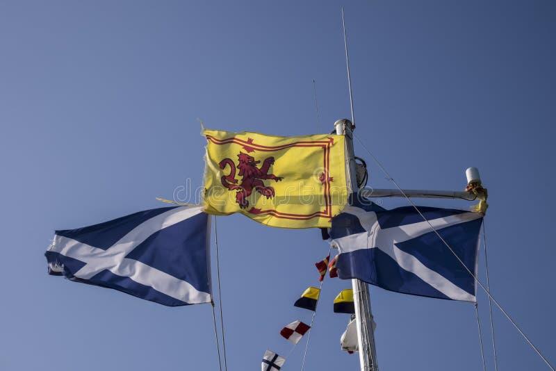 Schottische Flaggen, die in den Wind gegen klaren blauen Sommerhimmel wellenartig bewegen lizenzfreie stockfotografie