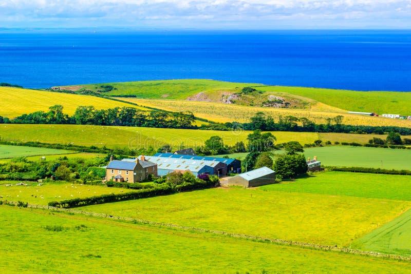 Schottische Sommerlandschaft, Ost-Lothians, Schottland, Großbritannien stockfotos