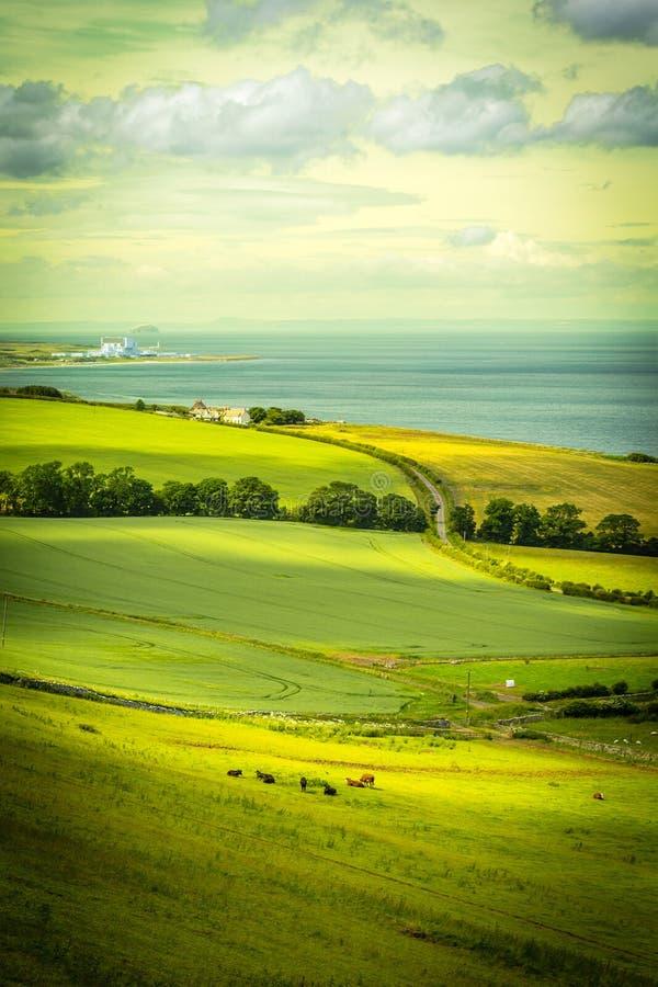 Schottische Sommerlandschaft, Ost-Lothians, Schottland, Großbritannien stockfotografie