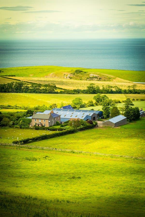 Schottische Sommerlandschaft, Ost-Lothians, Schottland, Großbritannien lizenzfreie stockfotos