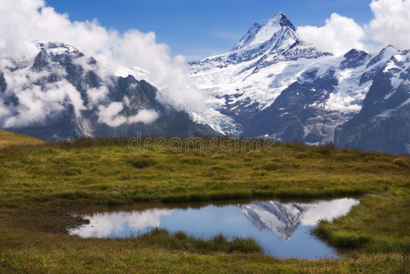 Schreckhorn reflekterar i det alpina dammet arkivbild