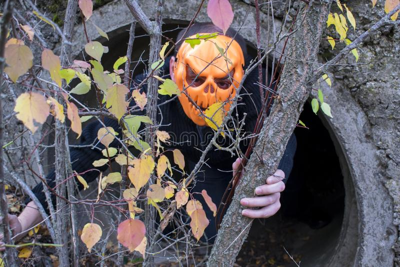 Schreckliches Geschöpf im Herbstwald am Abend Glückliches Halloween Pumpkinhead stockbilder