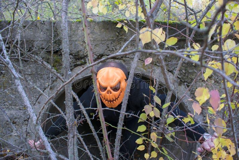 Schreckliches Geschöpf im Herbstwald am Abend Glückliches Halloween Pumpkinhead lizenzfreies stockfoto
