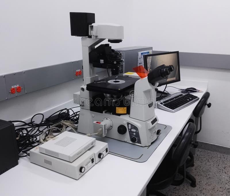Schreibtisch mit einer High-Techen Mikroskopiestation, Fluoreszenzmikroskop, im Labor lizenzfreie stockfotografie