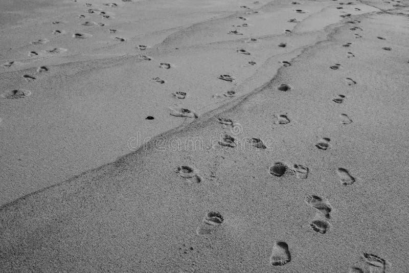 Schritte im Sand auf einem Strand stockfotos