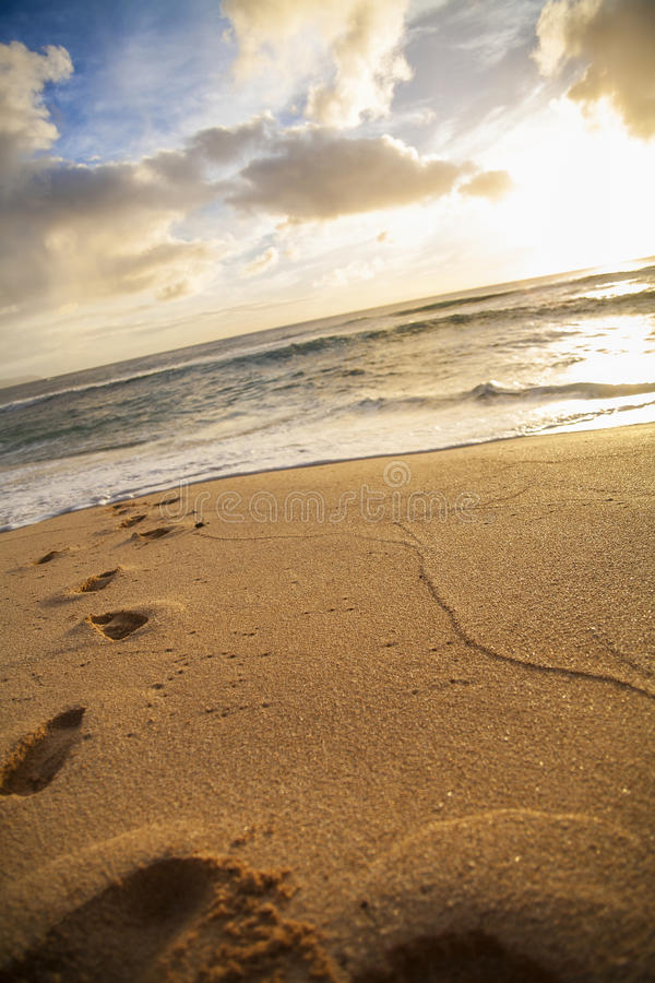 Schritte im Strandsand stockbild