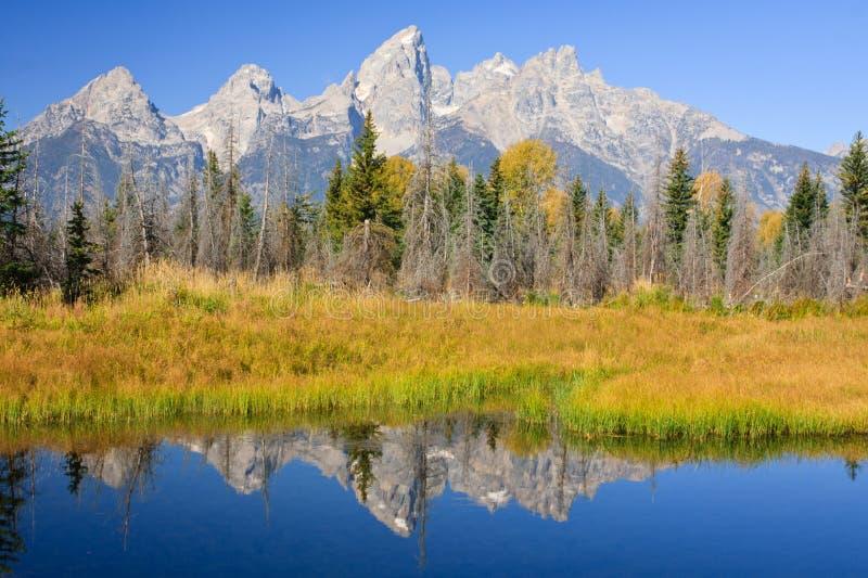 Schroffe Berge, die im ruhigen Fluss reflektieren stockfotografie