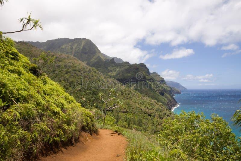 Schroffe Berge und Kalalau-Spur lizenzfreies stockfoto