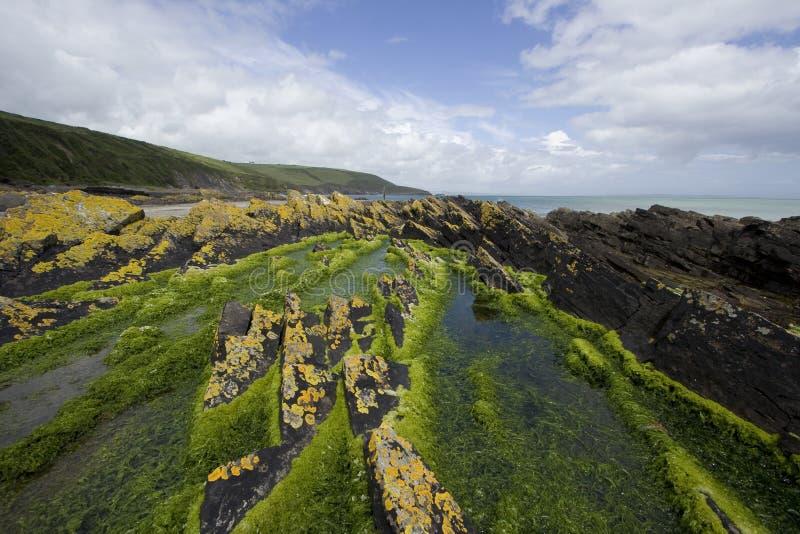 Schroffe Küstenlinie in Irland lizenzfreie stockfotos