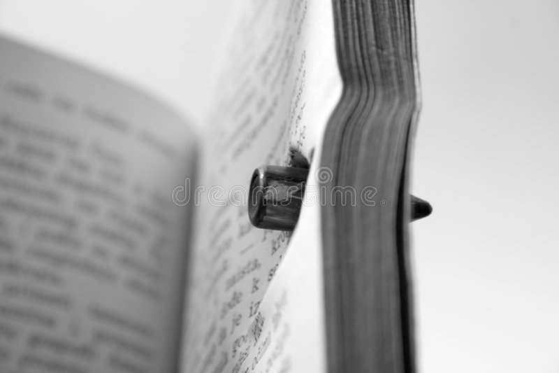 Schußbuch lizenzfreies stockbild