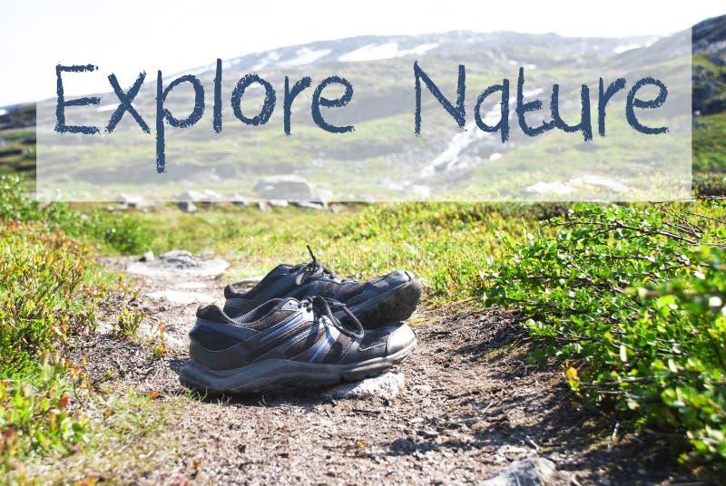 Schuhe auf Trekkings-Weg, Text erforschen Natur stockbild