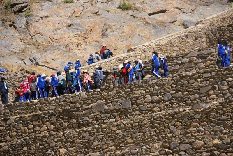 Schulkinder im Blau, das landwirtschaftliche Terrassen klettert stockfotos