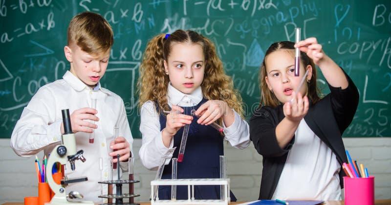 Schullabor Gruppenschulsch?ler studieren chemische Fl?ssigkeiten Schulchemielektion Reagenzgl?ser mit Substanzen lizenzfreie stockbilder