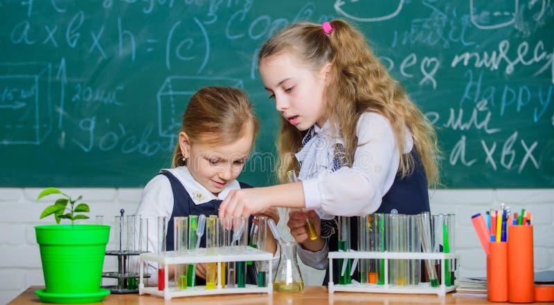 Schultrainingspartner Kinder besch?ftigt mit Experiment Reagenzgl?ser mit bunten Substanzen Chemische Analyse und lizenzfreie stockfotografie