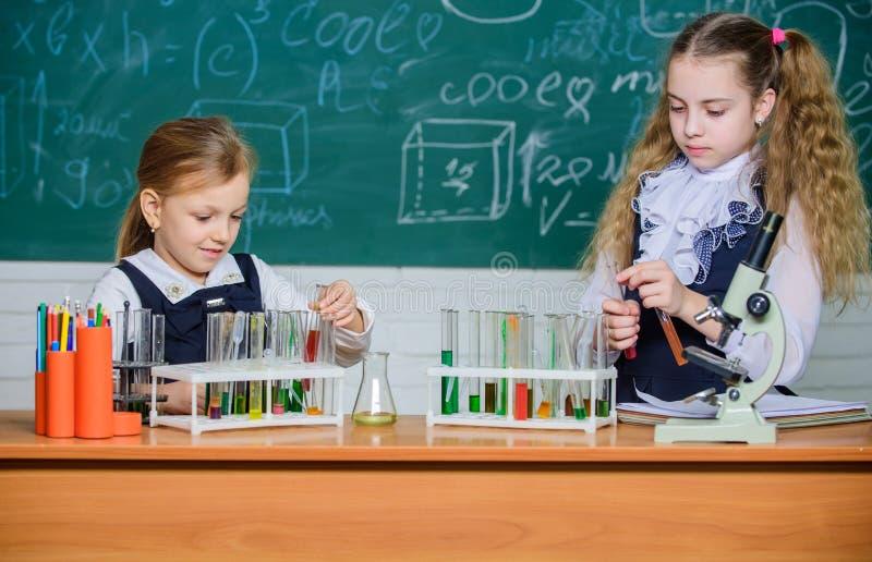 Schultrainingspartner Reaktion der chemischen Analyse und beobachten Reagenzgl?ser mit bunten Substanzen schule lizenzfreie stockfotografie