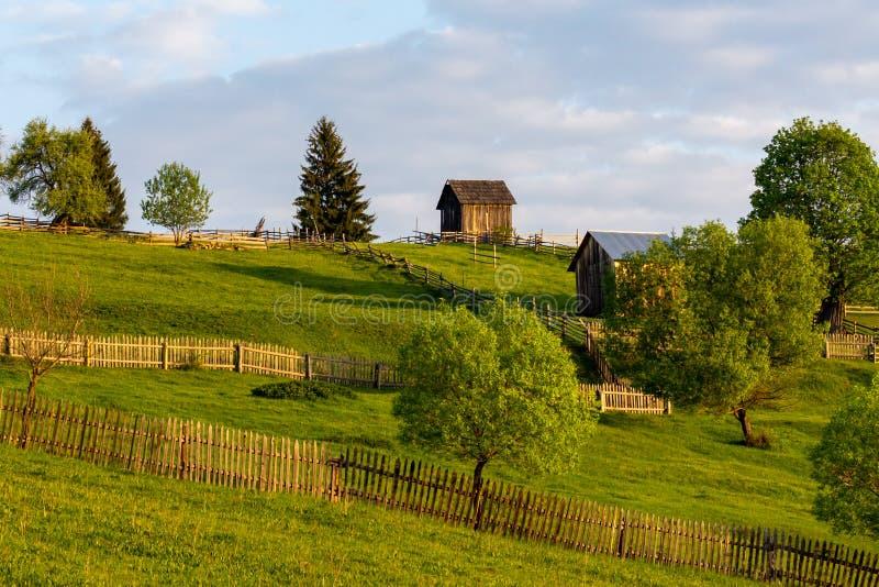 Schuren op een groene die weide en bomen door mooie zonsopgang wordt aangestoken royalty-vrije stock foto
