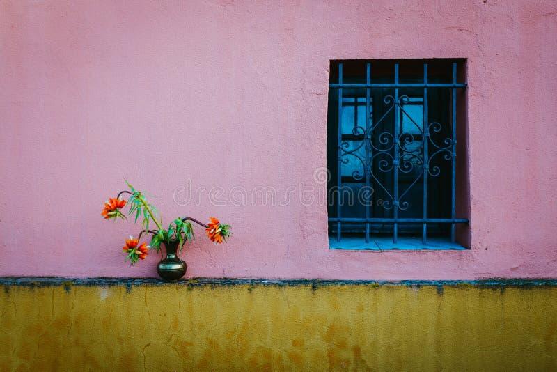 Schuss des blauen Rahmenfensters auf einer rosa Wand und einer orange Blume mit grünen Blättern stockbild