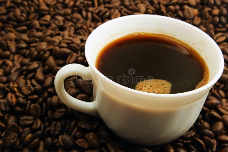 Schutzkappe des Kaffees stockfotos