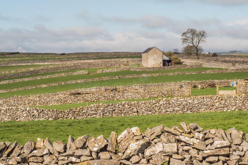 Schuur op gebieden, landschap royalty-vrije stock fotografie